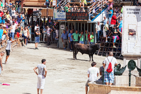 bullfight on horseback: SEGORBE, SPAIN - SEPTEMBER 14: Festival of bulls and horses in Segorbe, Spain, September 14, 2013. Annually the Holiday attracts more than 200 000 people.