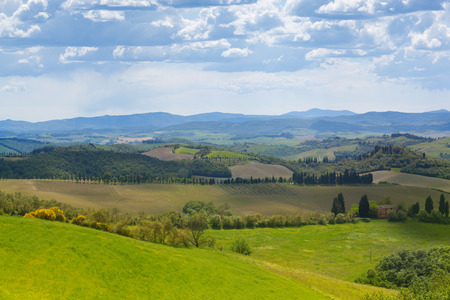 rural landscape: Beautiful summer rural landscape, Tuscany, Italy Stock Photo