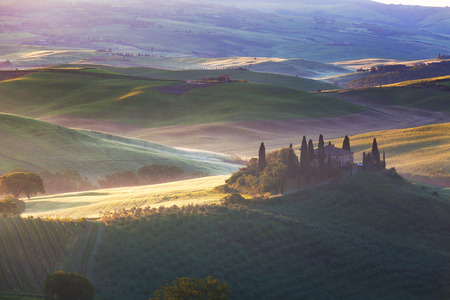 san quirico dorcia: Foggy morning over the rural house among vineyards in San Quirico dOrcia, Tuscany, Italy