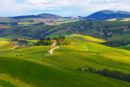 san quirico: Typical summer rural landscape of San Quirico d Orcia, Tuscany, Italy Stock Photo