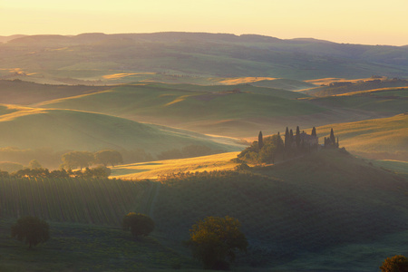 san quirico d'orcia: Sunrise over the rural house with vineyards in San Quirico dOrcia, Tuscany, Italy Stock Photo