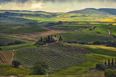 san quirico d'orcia: farmer estate with vineyards  at sunrise in San Quirico dOrcia, Tuscany, Italy