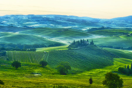 san quirico: Foggy dawn over the rural house with vineyards in San Quirico dOrcia, Tuscany, Italy