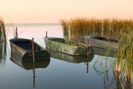windless: Three boats on the lake in thickets of canes at sunrise in windless weather Stock Photo
