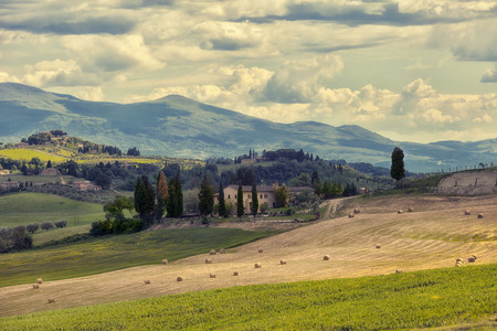 Typical summer rural landscape of Tuscany, Italy photo