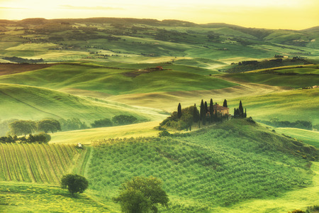 vineyard: rural house on the hill among vineyards, San Quirico dOrcia, Tuscany, Italy