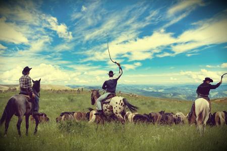 Three cowboys drive herd of horses , toning, vignetting 写真素材