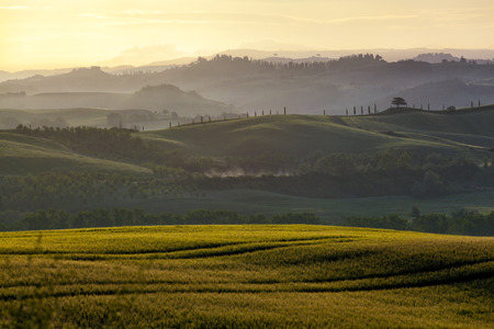 Beautiful rural landscape of Tuscany early in the morning before sunrise photo
