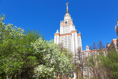 stalin empire style: blossoming pear tree against Moscow State University