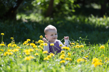 glade: little girl plays on a glade with the blossoming dandelions Stock Photo