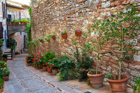 spello: Plants in pots on narrow streets of the ancient city of Spello, Umbria, Italy