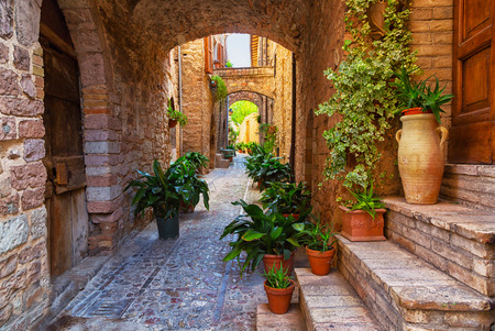 Plants in pots on narrow streets of the ancient city of Spello, Umbria, Italy Stock Photo - 47838321