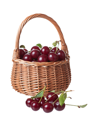 wattled: wattled basket filled with ripe cherries, isolated, a white background