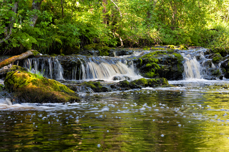 karelia: Beautiful small forest waterfall in Karelia, Russia