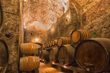 Wooden barrels with wine in a wine vault Reklamní fotografie