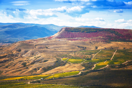 Beautiful autumn landscape with mountains and vineyards, Crimea