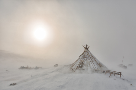 Nenets reindeer herders choom on a winter morning Stock Photo