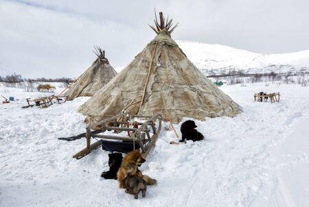 Nenets deer herders choom on a winter day