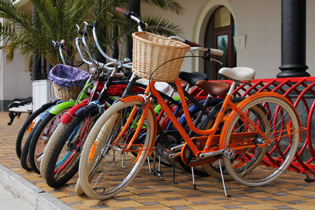 rented: Many multi-colored bicycles are rented for hire