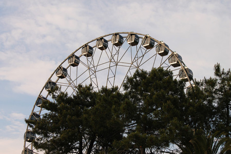excitation: Attraction Ferris wheel in the amusement park in the city of Sochi