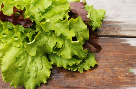 Still life of lettuce in the conventional wooden boards