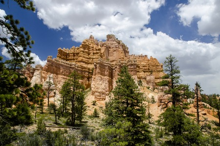 Bryce Canyon - National Park - USA Fairyland Loop Trail 写真素材
