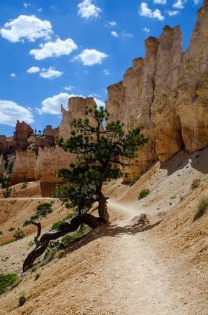 Bryce Canyon - National Park - USA Fairyland Loop Trail photo