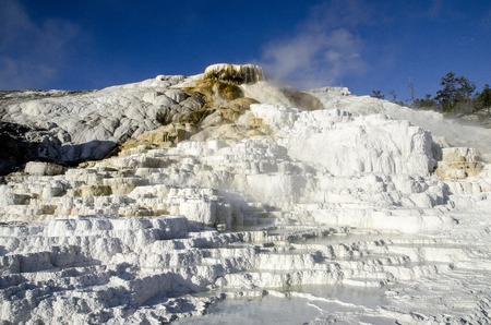 Hot springs on hill of travertine in Yellowstone National Park - Mammoth Hot Springs photo
