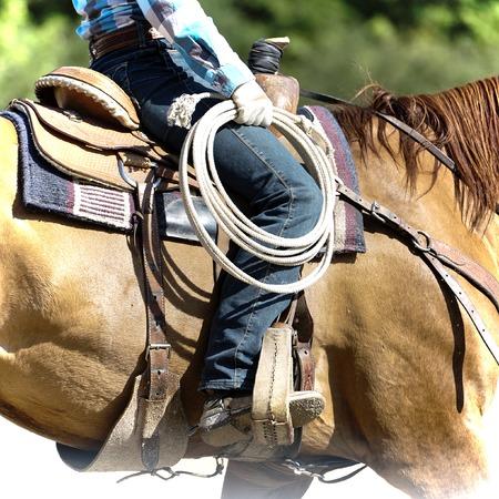 Part of cowboy equipment - lasso photo