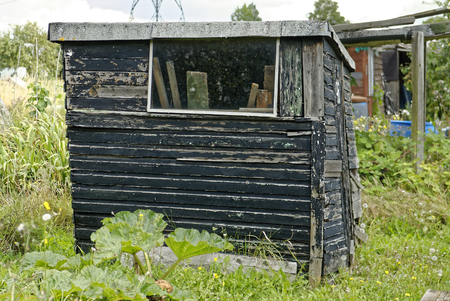 rotting: Rotting wooden Shed, Allotment Garden where land is made available for personal cultivation of fruit and vegetables. Stock Photo