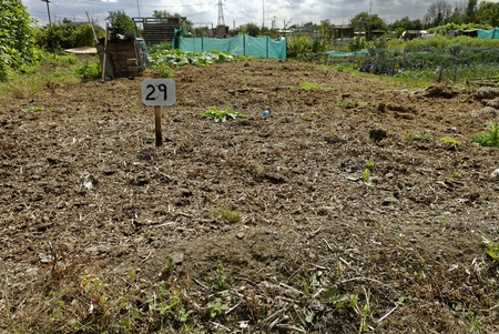 plot: Vacant Plot, Allotment Garden where land is made available for personal cultivation of fruit and vegetables.