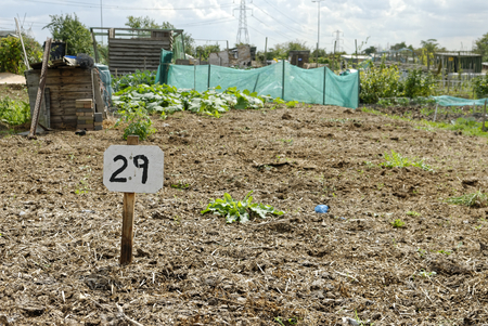 vacant sign: Vacant Plot, Allotment Garden where land is made available for personal cultivation of fruit and vegetables.