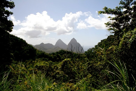 st lucia: The Piton Mountains on the Caribbean island of St. Lucia.
