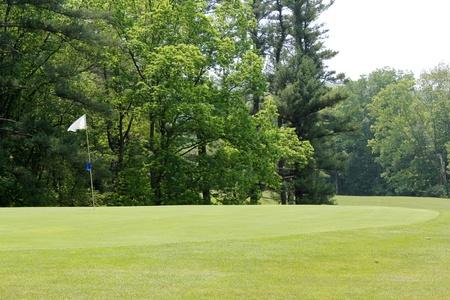 ゴルフコースのフェアウェイ、グリーン森林の枠線に隣接します。 写真素材