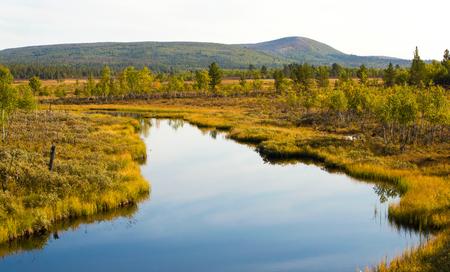 swamps: Overlooking a swamps in H�rjedalen