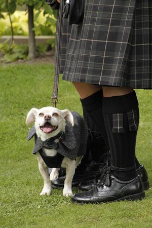 Happy Dog at Scottish Wedding
