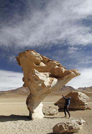 Stone Tree in Uyuni, Bolivia