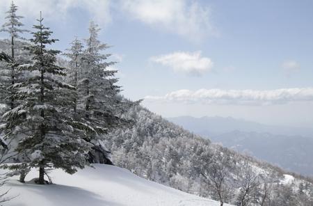 Winter wonderland in the snowy mountains near Kusatsu Onsen, Japan 写真素材