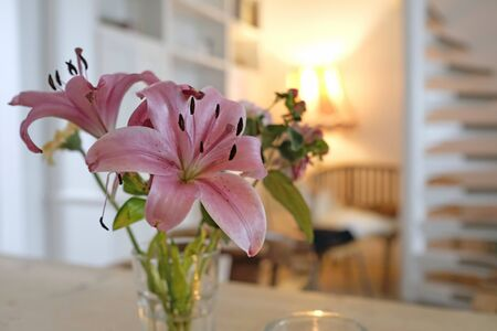 Beautiful flower on a table in cozy apartment Stock fotó