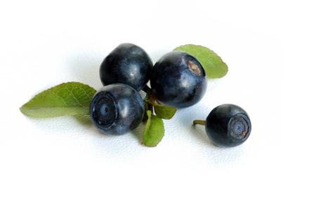 bilberry close-up Stock Photo