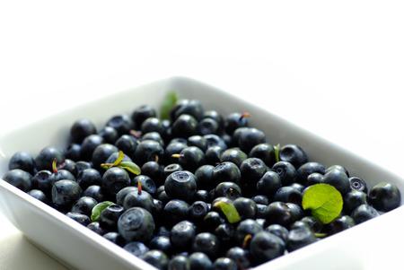 bilberries: plate with bilberries