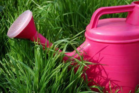 watering-pot Stock Photo - 2701865