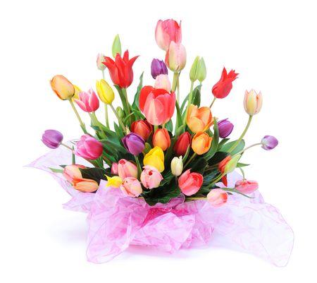 colored tulips Stock Photo