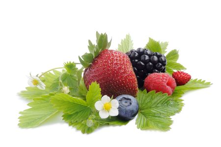 berries close-up Stock Photo