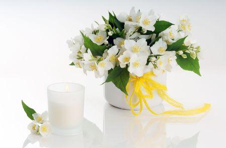 jasmine flowers arrangement Stock Photo