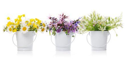 floral arrangement Stock Photo - 7275237