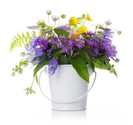 flor silvestre: flores silvestres