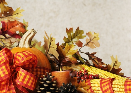 autumn  still life Stock Photo - 10942054