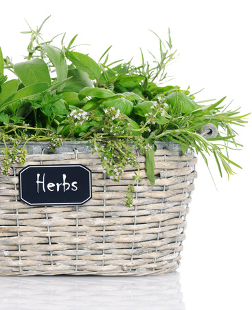 basket with herbs photo
