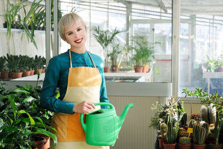 houseplant: cheerful florist